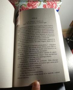 Wpis 18 z Rafaela Bieleckiego